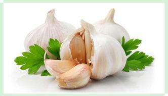 garlic for sex